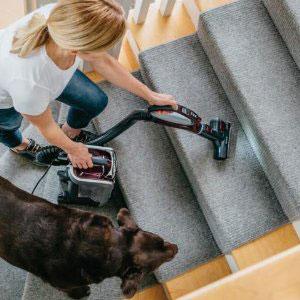 Best Pet Vacuum - Carpeted Stairs